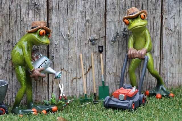 Gardener Garden Professionals  - Rollstein / Pixabay