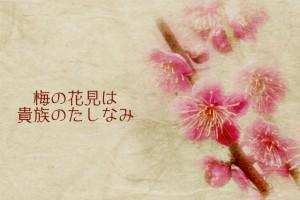 梅の花見は