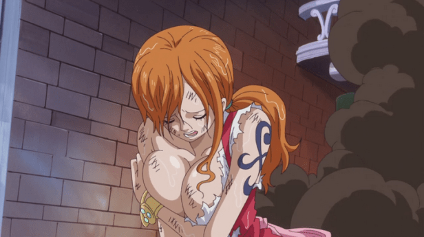 One Piece 819 Fanservice