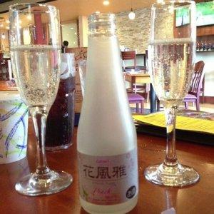 Sakura Drinks