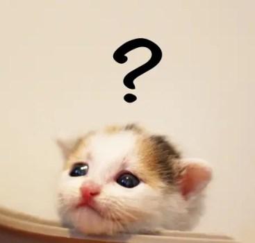 【HSP体験談】仕事にいくのが嫌で嫌で仕方がない・・その理由って・・???
