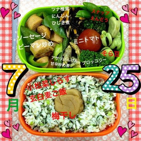 今日のダイエット弁当(2012年7月25日)