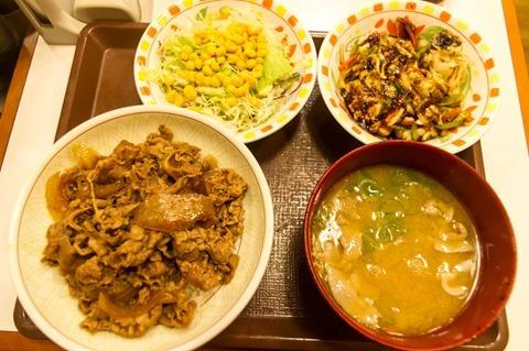 131227sukiya-kokumisoyasaigyudon04