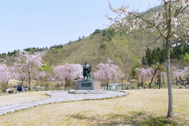 銭淵公園 桜