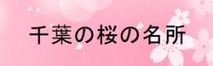 千葉の桜の名所