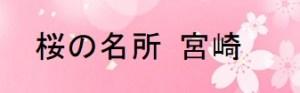 宮崎の桜の名所