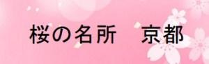 和歌山の桜の名所
