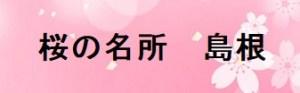 島根の桜の名所