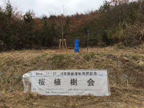 11-27tohanayama_01