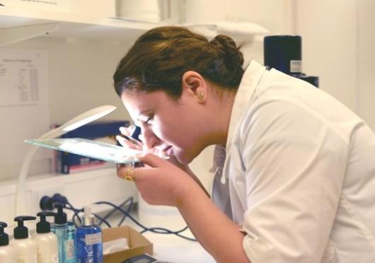 Mayaa i Lab