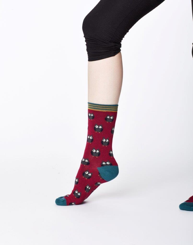 Thought Owlie Sock Cranberry