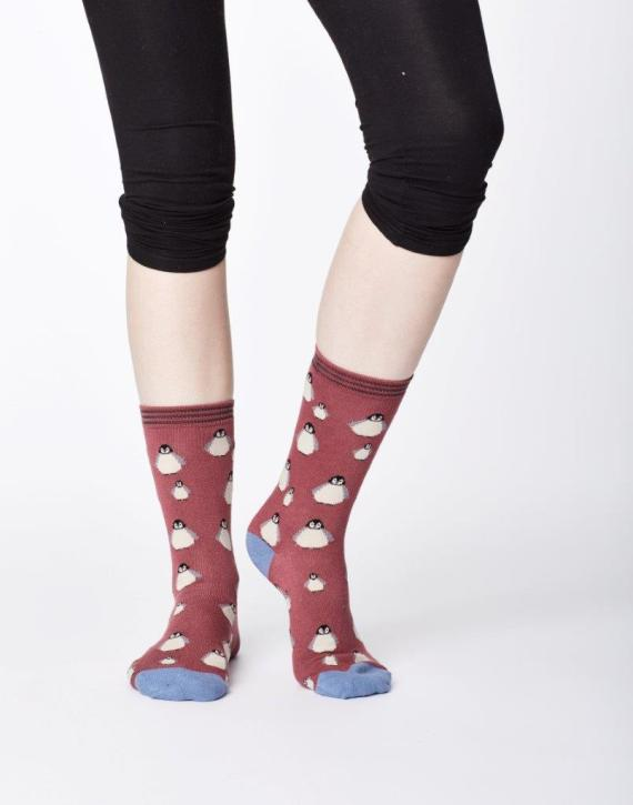 Thought Penguin Sock Rose Pink