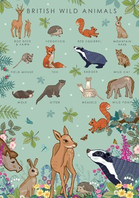 British Wild Animals Collection Card, by Heart of a Garden