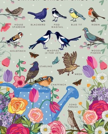 British Garden Birds Collection Card, by Heart of a Garden