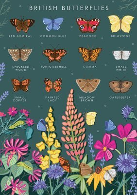 ritish Butterflies Collection Card, by Heart of a Garden
