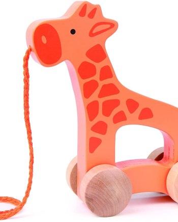 Walk Along Giraffe