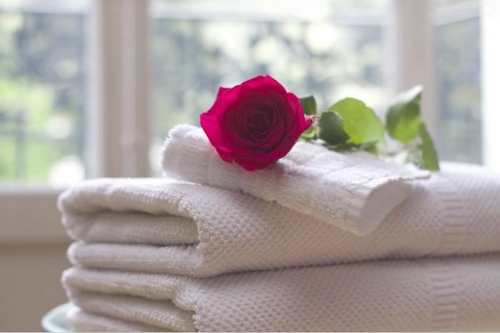 gambar-bunga-mawar-dan-maknanya