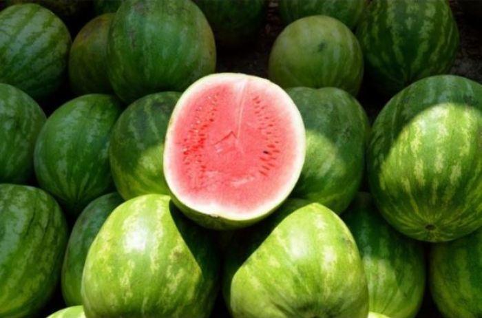 gambar-buah-semangka