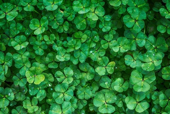 arti warna hijau