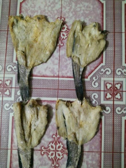 jual ikan asin gabus