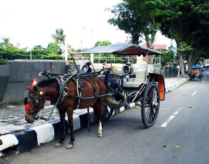 alat transportasi tradisional delman