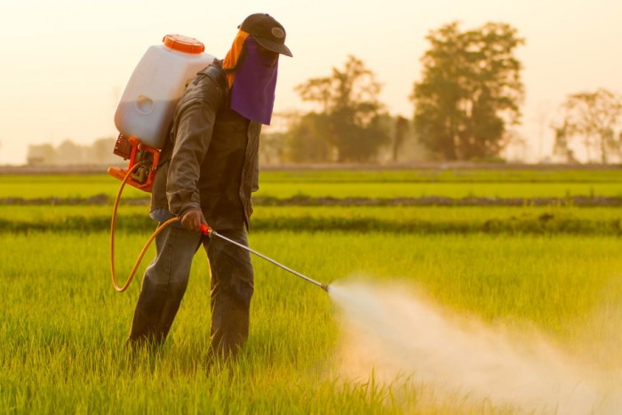 15 Alat Pertanian Tradisional Modern Beserta Fungsinya Salamadian