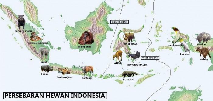 Persebaran Flora Dan Fauna Di Indonesia Barat Tengah Timur Salamadian