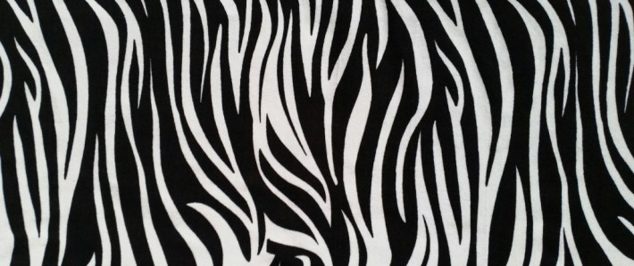 zebraprint EDS Awareness