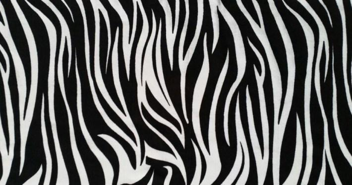 zebraprint EDS Awareness