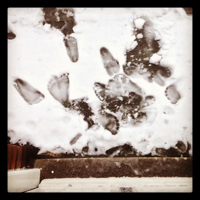 sneeuwtrappelen