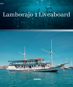 Kapal Lamborajo 1 Liveaboard Komodo Labuan Bajo Trip