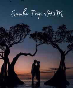 Open Trip Sumba 4H3M 2020