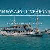 Open Trip Komodo Lamborajo 1 Liveaboard