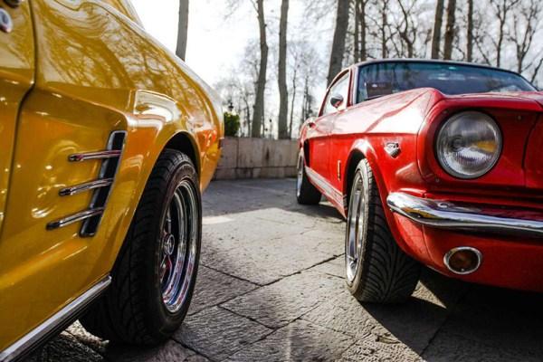 عکس: رونمایی از خودروهای تاریخی و کلاسیک در مجموعه فرهنگی تاریخی نیاوران