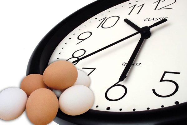 تغییر ساعت ها ریتم کار در مرغداری و تخم گذاری مرغها را مختل می کند!