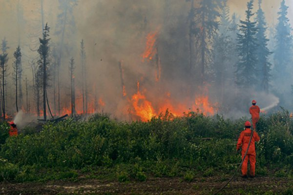 بیش از 300 آتش نشان از انتاریو و سه استان دیگر کانادا وارد بریتیش کلمبیا شدند  تا در کار فرو نشاندن آتش های جنگلی در این استان، کمک کنند.