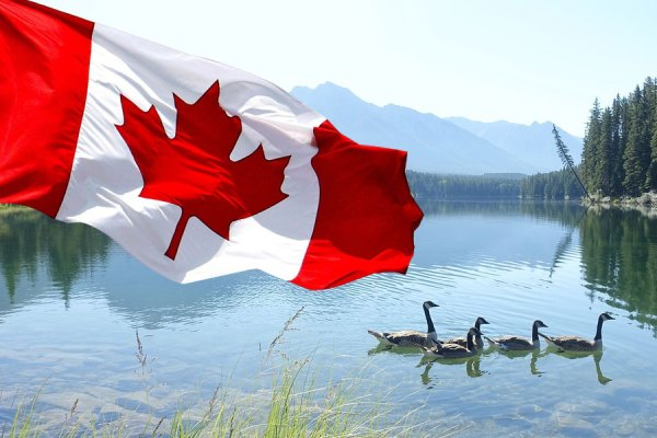برای اثبات مدت زمانی که در کانادا بوده اید، لازم است مدت زمان پنج ساله درست قبل از ارائه اپلی کیشن تان را بررسی کنید
