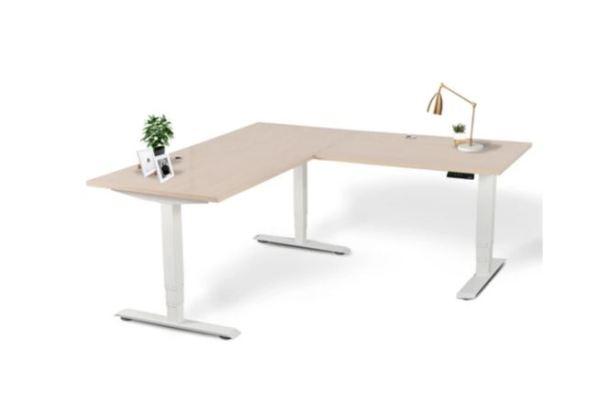 Executive Office Adjustable Desk