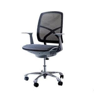Modern luxury Chair