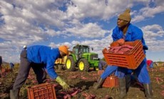 File photo of farm workers. AFP