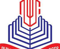 Punjab College Salary Package In Pakistan