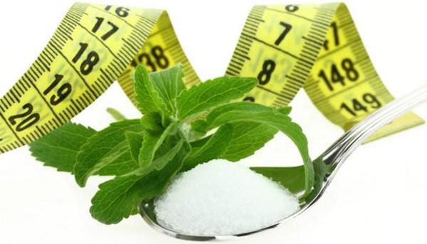 Stevia, eritrit, xilit használata cukor helyett