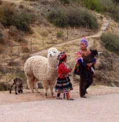 Indios com suas alpacas