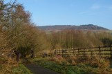 Hedge work by Tittesworth Water