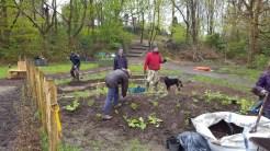 Volunteers at work 2
