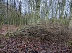 A habitat pile