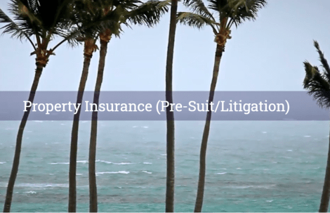 Property Insurance (Pre-Suit/Litigation)