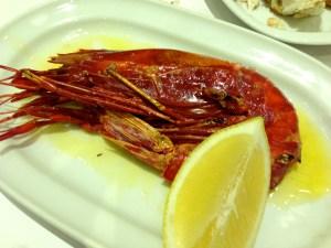 Scarlet Shrimp.