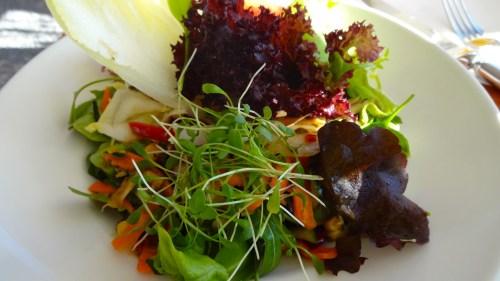 Mixed Garden Salad (7/10).