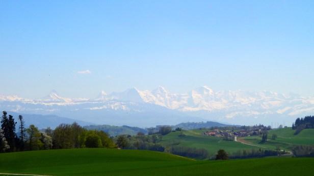 View From Gurten Park.